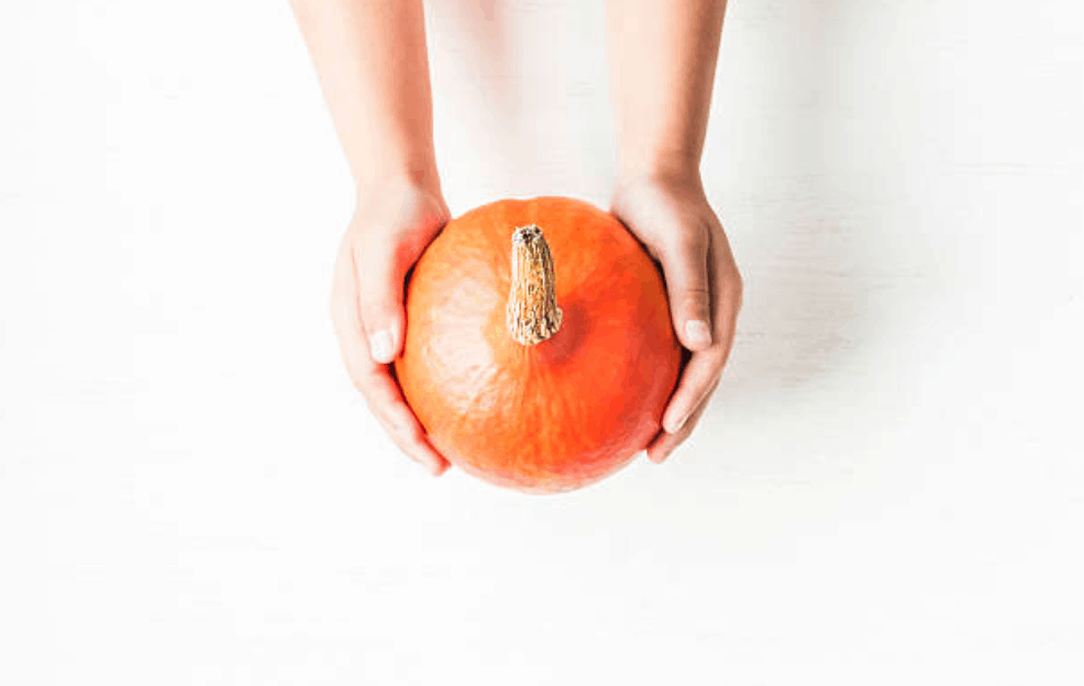 Harvest History: Old School Pumpkin Pie
